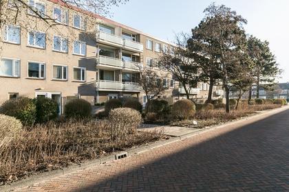 Sondauwhof 19 in Noordwijk 2203 EK