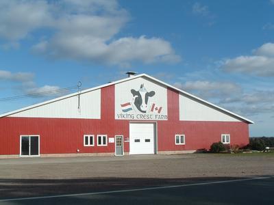 Viking Crest Farm Canada in Terborg 7061