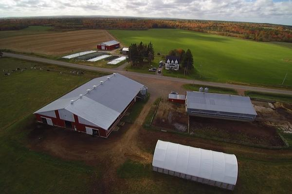 Viking Crest Farm Canada in Terborg 7061