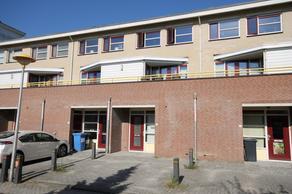 Irene Vorrinkstraat 25 in Culemborg 4105 JA