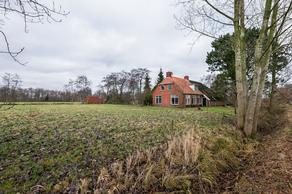 Langewijk 9 in Nieuw-Roden 9311 TD