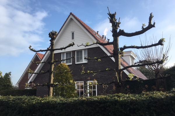 Rumba 4 in Nieuw-Vennep 2152 SC