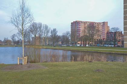 Leonard Springerlaan 65 in Haarlem 2033 TB