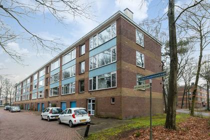 Antonie Van Leeuwenhoeklaan 233 in Soesterberg 3769 XH