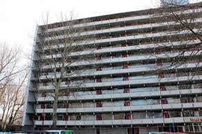 Buizerd 56 in Heerenveen 8446 KL