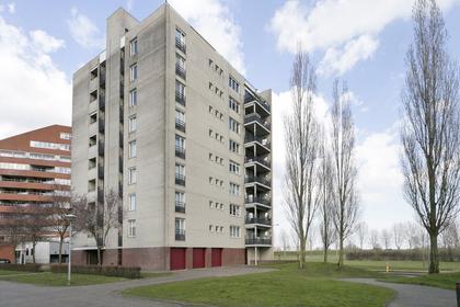 Schout Van Brechtstraat 53 in 'S-Hertogenbosch 5237 SP