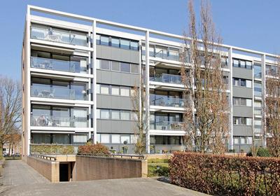 Treubstraat 89 in Nijmegen 6535 ZG