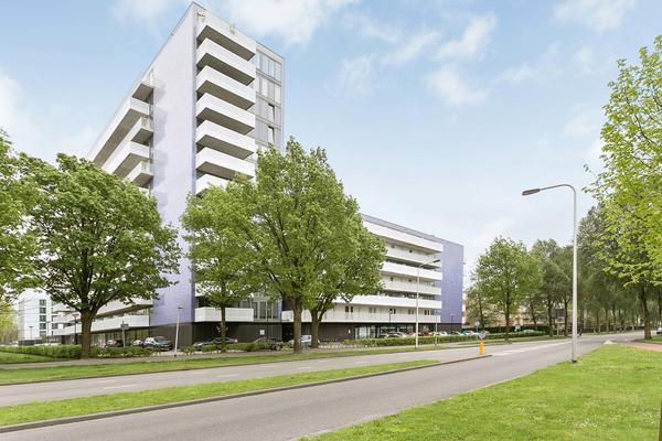 Vijfhagen 385 in Breda 4812 XT