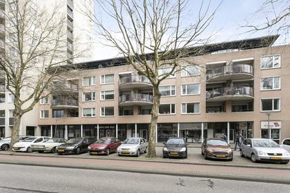 Pettelaarseweg 188 in 'S-Hertogenbosch 5216 BW