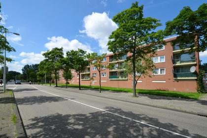 Botterstraat 220 in Amsterdam 1034 BW