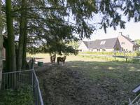Hersel 1 in Lierop 5715 PL
