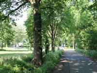Prinsenweg in Voorthuizen 3781 NP
