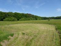 Landgoedkavels De Vijverhof in Huijbergen 4635 RA
