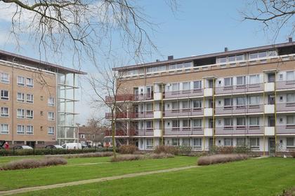 Aalbersestraat 198 in Amsterdam 1067 GL