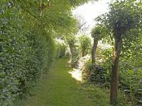 Landje Tussen Klein Elfhoeven En Vrijhoef in Reeuwijk 2811