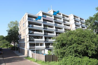 Stadzicht 48 in Leiden 2317 RR