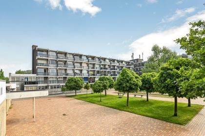 Loplein 62 in Arnhem 6834 CW