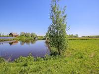 in Steenbergen 4671 TT