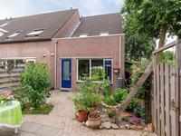 Piccolo 77 in Rotterdam 3068 HR