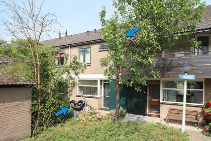 Purperwier 19 in Leiden 2318 AE
