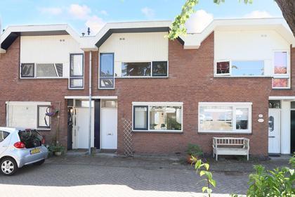 Platschelpenbank 7 in Leiden 2317 ML