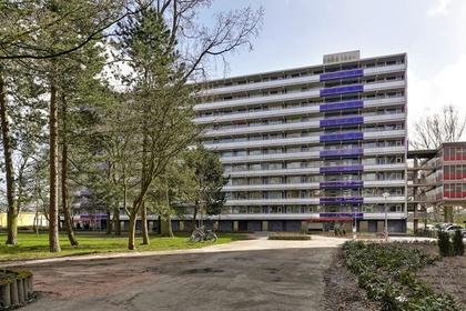 Tjasker 72 in Amsterdam 1035 CT