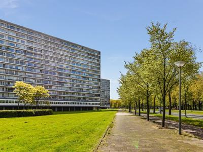 Burgemeester Hogguerstraat 771 in Amsterdam 1064 EB