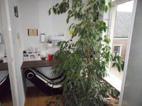 Molenstraat 20 in Steenwijk 8331 HR