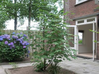 Petrus Dondersstraat 199 in Eindhoven 5613 LV