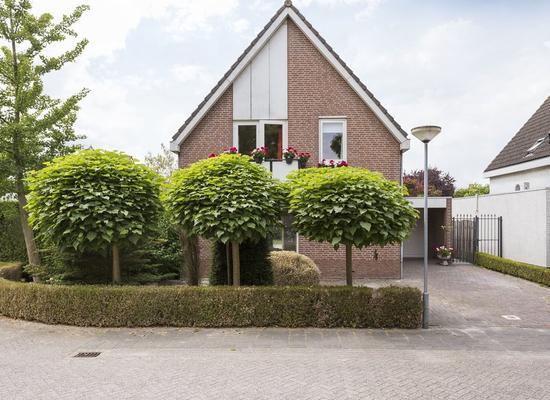 De Meekrap 6 in Zevenbergen 4761 XV