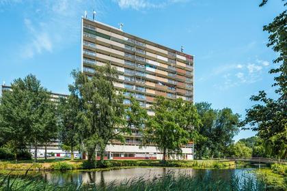 Munt 71 A in Heerenveen 8446 AK