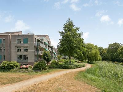 Gildelaan 40 in Zevenbergen 4761 BA