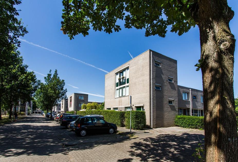 Rosarium 56 in Almere 1338 MZ