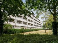 Groot Paradijs 65 in Eindhoven 5611 KA