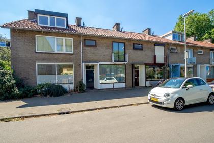 Lodewijk Napoleonplantsoen 9 in Utrecht 3582 TJ
