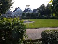 Dotterbloem 19 in Den Hoorn 2635 KA