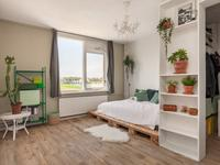 Zwin 3 in Noordwijk 2201 WZ