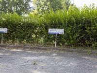 Achterwerf 354 in Almere 1357 DG