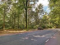 Hartenseweg 38 A in Wageningen 6705 BK