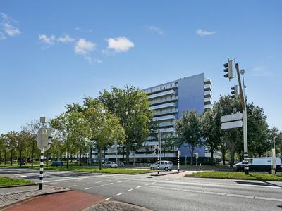 Vijfhagen 113 in Breda 4812 XT