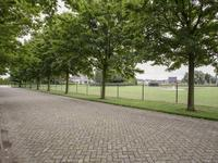 Griftdijk 128 in Nijmegen 6515 AG