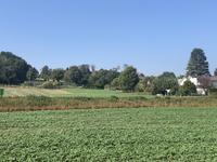 Burgemeester Ceulenstraat 110 in Maastricht 6212 CV