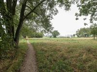 Hiddemaheerd 164 in Groningen 9737 JK