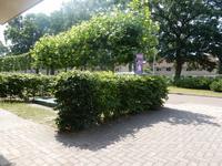 Reigersbek 9 in Nijverdal 7443 TS