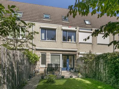 Bruin Zandoogje 38 in Breda 4814 SR