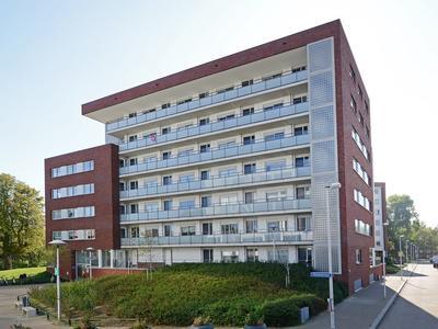 Royaards Van Den Hamkade 233 in Utrecht 3552 CL
