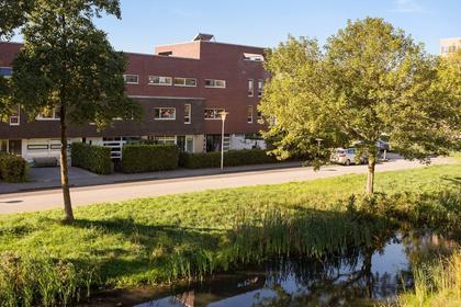 Fonteinkruid 72 in Zwolle 8043 NC