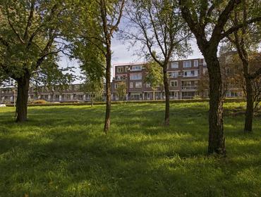 Bezembinder 54 in Alphen Aan Den Rijn 2401 HM