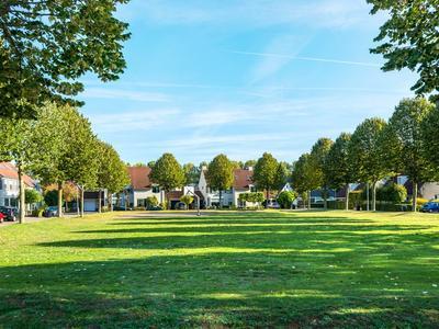 Wouterus Van Der Doelenstraat 6 in 'S-Hertogenbosch 5221 JA