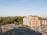 Papiermolen 158 in Leiden 2317 SZ